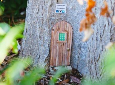 A tiny wooden door, one of 20 in the West Palm area, nestles into the base of a tree.