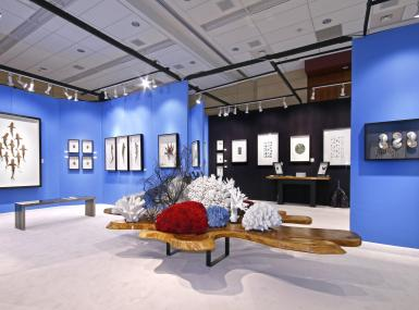 Bright blue walls are backdrop for framed marinelife art with large cypress table piled high with coral in foreground