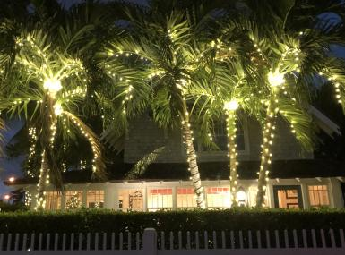 White twinkle lights on palm trees in front of white bungalow with white picket fence