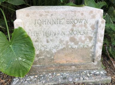 Headstone marking grave for Johnnie Brown, Human Monkey, Palm Beach Florida