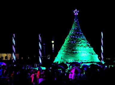 Sandi the giant sand Christmas tree lit up in green
