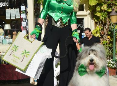 Sheepdog with green bowtie and handler in green hat and blouse pose on stage