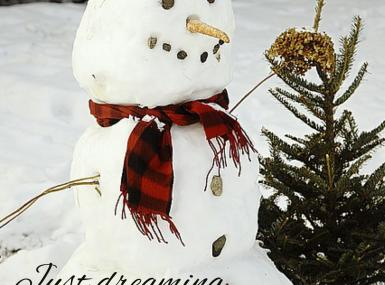 Snowman with red scarf next to small pine tree with caption Just Dreaming