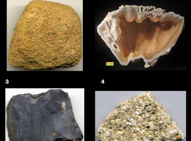 Collage of four types of Florida rocks