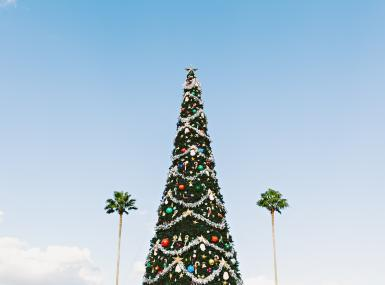 Large Christmas tree with blue skies and palm trees in background