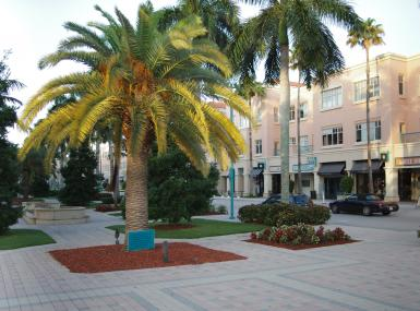 Outdoor plaza brick paved with palms and peach colored stores